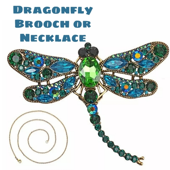 Jewelry - LARGE Dragonfly brooch OR Necklace